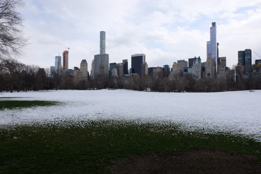 Snow in Central Park