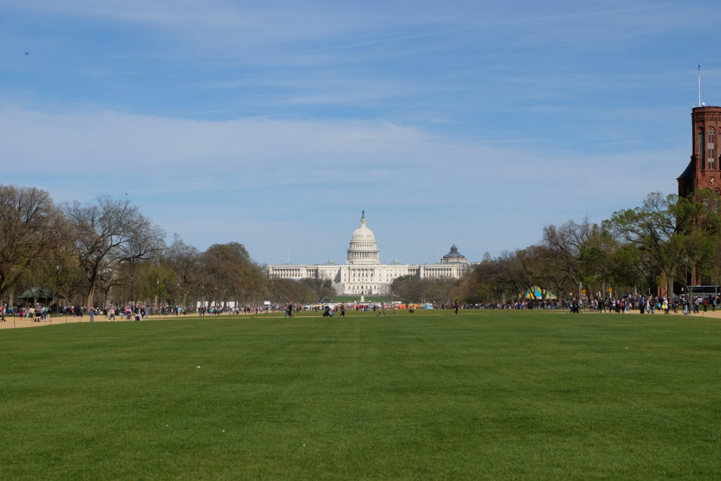 The capital's capitol