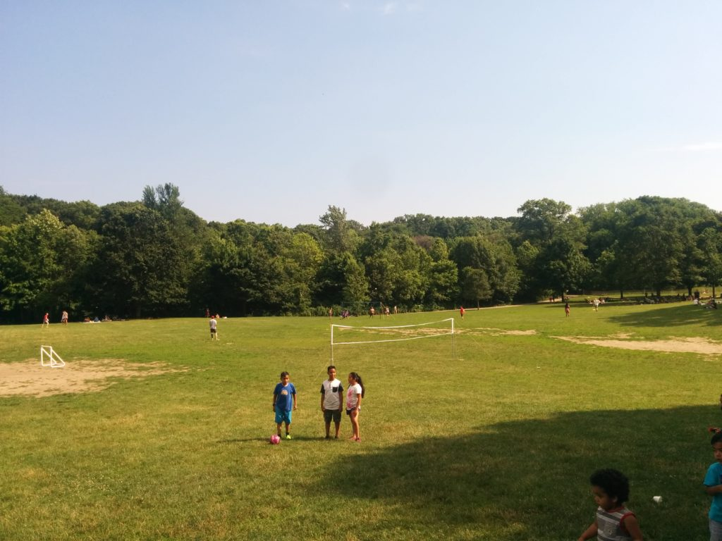 A sunny day in Prospect Park - where I live really close to right now.