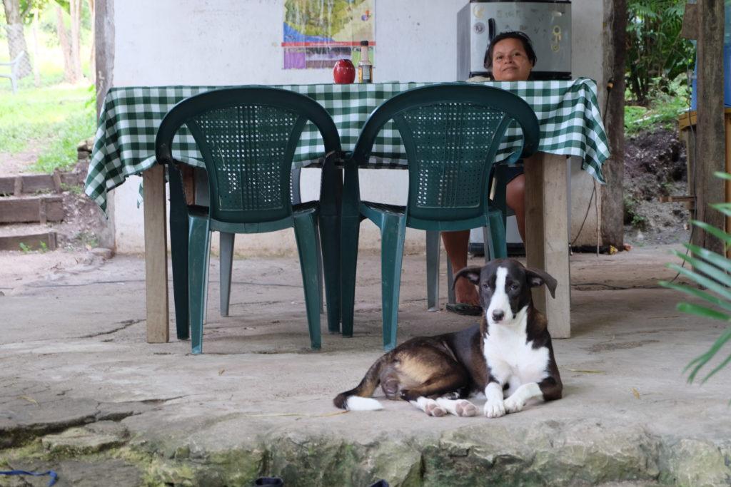 Host + Dog