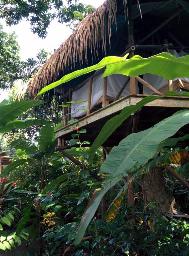 My accomodation in Costa Rica